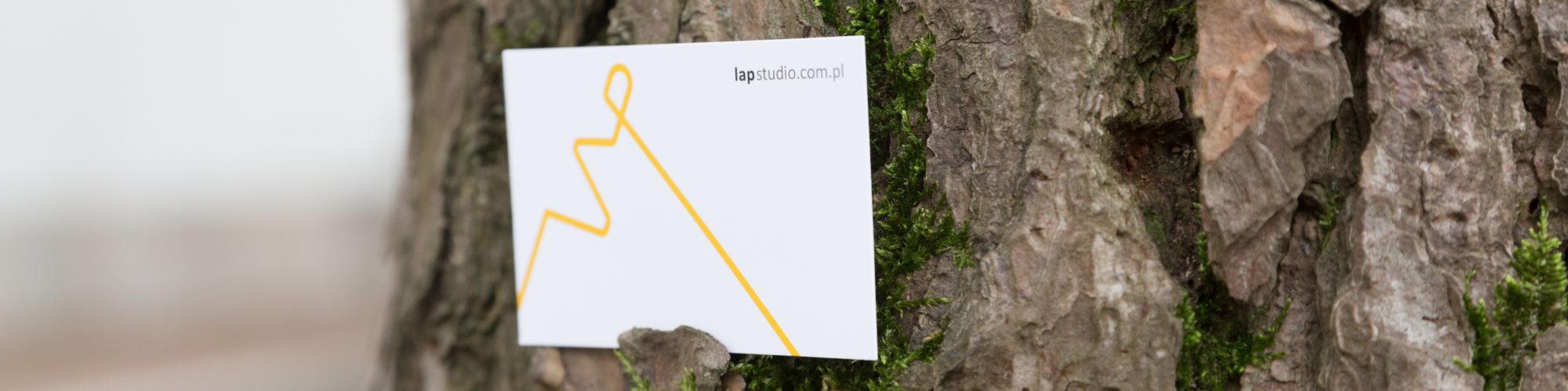 LAPstudio_ct02